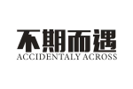 不期而遇 ACCIDENTALY ACROSS